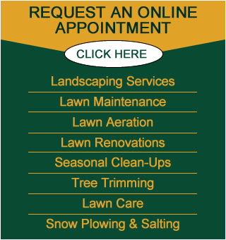 Landscaping Services | Spring and Fall Cleanup | Weekly Lawn Maintenance